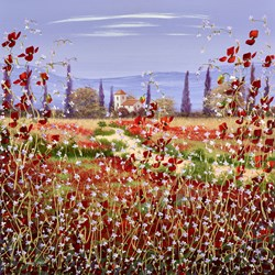 House in the Poppy Fields III by Mary Shaw - Original Painting on Board sized 24x24 inches. Available from Whitewall Galleries